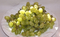 Thompson Seedless Grape