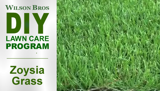 Wilson Bros Do It Yourself Lawn Care Program For Zoysia Grass Lawns