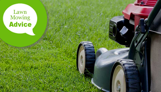 Tips For How To Mow A Lawn