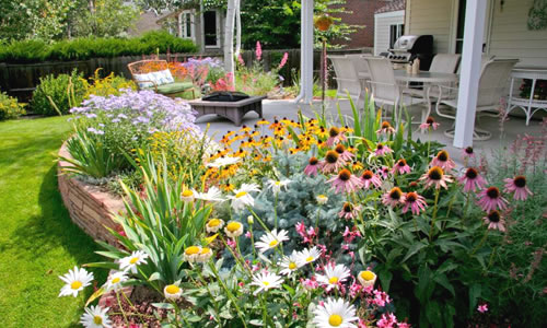 How To Plant Perennial Plants In A Garden Bed