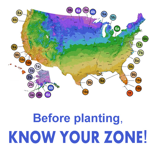 USDA Plant Hardiness Zones Map