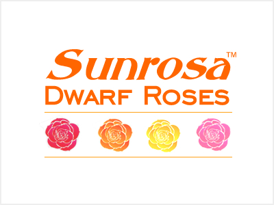 Sunrosa Rose Collection