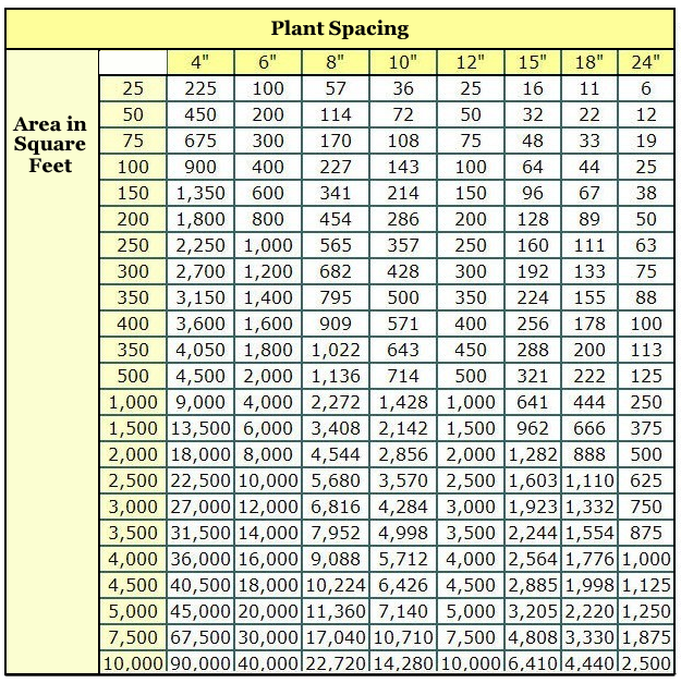 How To Determine How Many Plants To Fill A Space Or Area