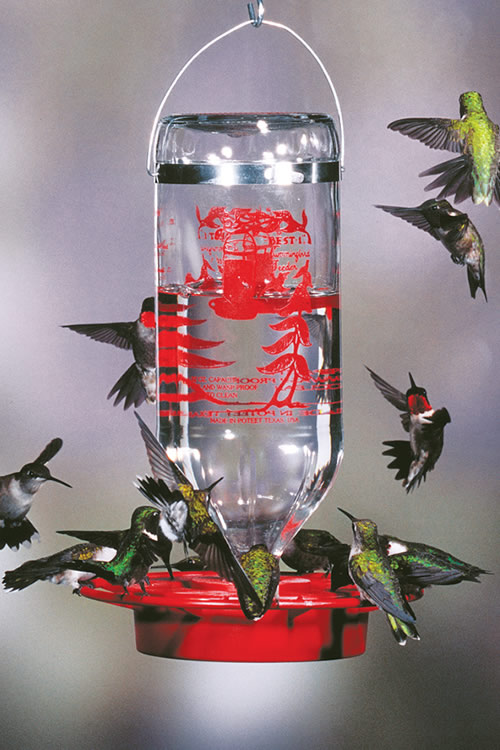 hummingbird humming designs glass cfm bird feeder p product faceted ruby prod display schrodt